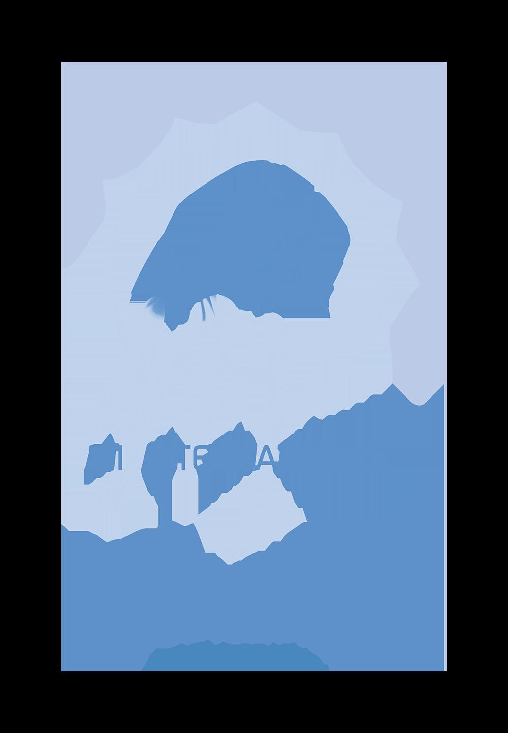 100th Anniversary of the MI